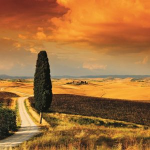 Tuscan Sunset 1000 Piece Jigsaw Puzzle by Jumbo