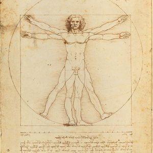 Vitruvian Man Leonardo 500 Piece Clementoni Puzzle