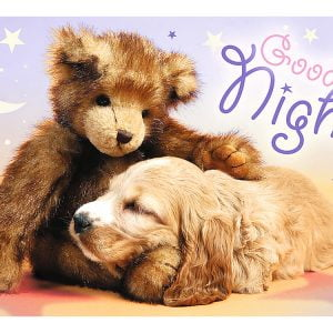 Sweet & Lovely Goodnigh 60 Piec Children's Puzzle