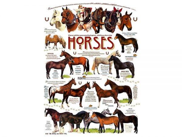 Horse Quotes 1000 Piece Puzzle - Cobble Hill