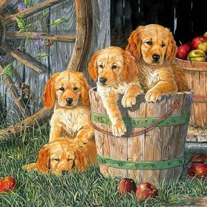 Puppy Pail 400 Piece Family Format Puzzle by Cobble Hill