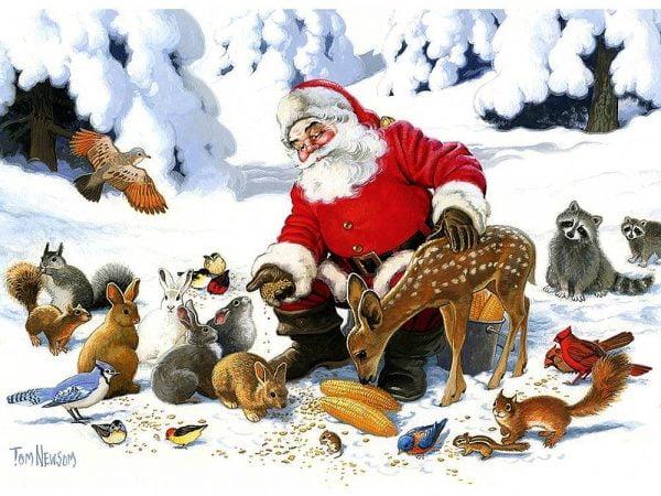 Santa Claus & Friends Family Pieces 350 by Cobble Hill