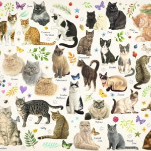 Cats Poster 1000 Piece Jigsaw Puzzle by Jumbo