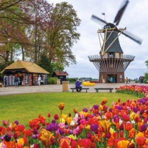 De Keukenhof, Holland 1000 Piece Panoramic Puzzle