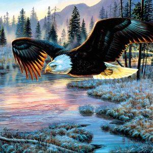 Eagle Dawn 1000 Piece Jigsaw Puzzle - Sunsout