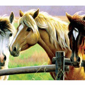 Horse Fence 1000 Piece Jigsaw Puzzle - Sunsout