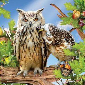 Owl Always Love You 500 Piece Jigsaw Puzzle