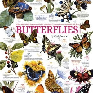 Butterfly Collection 1000 Piece Cobble Hill Jigsaw Puzzle