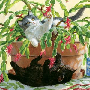 Cactus Kitties 1000 Piece Puzzle - Cobble Hill