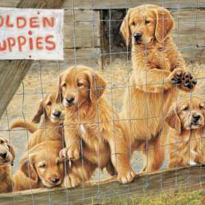 Golden Puppies 500 Piece Cobble Hill Jigsaw Puzzle