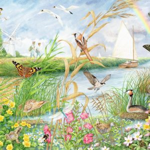Norfolk Broads 1000 Piece Jigsaw Puzzle