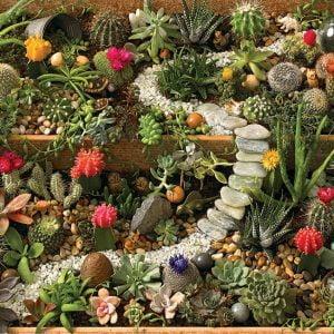 Succulent Garden 1000 Piece Cobble Hill Jigsaw Puzzle