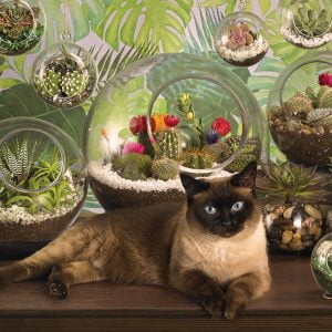 Terrarium Cat 1000 Piece Cobble Hill Puzzle