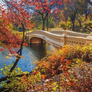 A Stroll Through Central Park 1000 Piece Jigsaw Puzzle - Schmidt