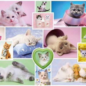 Cuddly Cats 1000 Piece Jigsaw Puzzle - Schmidt