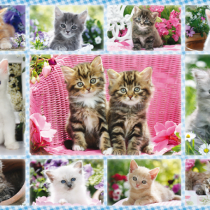 Kittens 100 Piece Jigsaw Puzzle