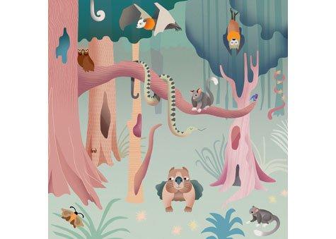 Wild Australia - Leadbeater's Possum 3 x 49 Piece Jigsaw Puzzle - Blue Opal
