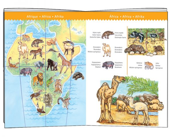 Observation Puzzle - Worlds Animal 100 Piece - Djeco
