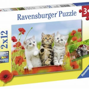 Kitten Adventures 2 x 12 Piece Jigsaw Puzzle - Ravensburger