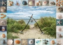 Frank - Seashore Collectibles 1000 Piece Jigsaw Puzzle - Schmidt