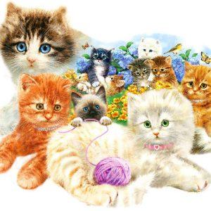 A Litter of Kittens 1000 Piece Shaped Jigsaw Puzzle - Sunsout