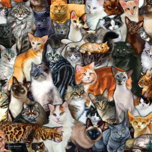 Cat Collage 300 Lage Piece Jigsaw Puzzle - Sunsout