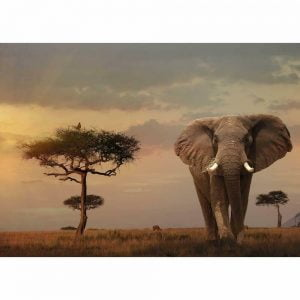 Elephant of the Massai Mara 1000 Piece Jigsaw Puzzle - Ravensburger