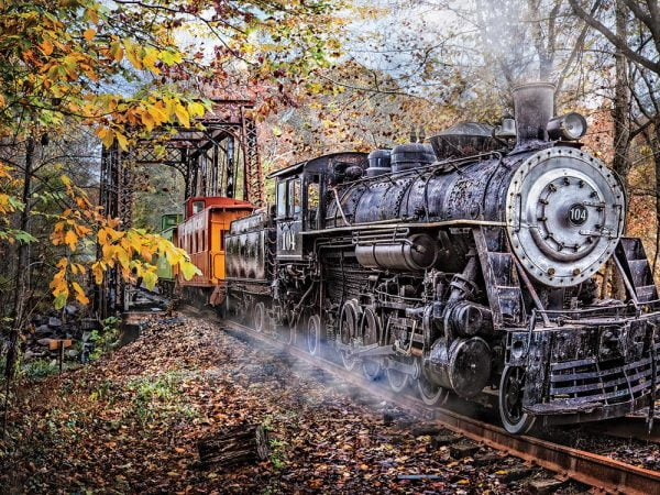 Train's Coming 1000 Piece Jigsaw Puzzle - Sunsout