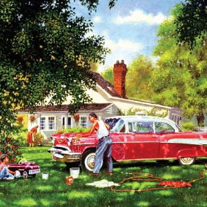 Wash Me 300 XL Piece Jigsaw Puzzle - Sunsout
