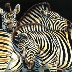 Zebras 500 Piece Jigsaw Puzzle - Sunsout