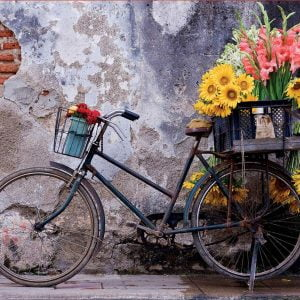 Bicycle with Flowers 500 Piece Jigsaw Puzzle - Educa