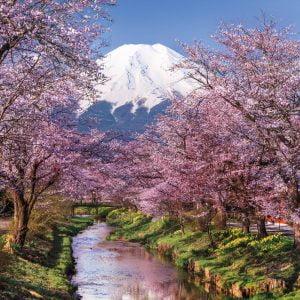Fuji Mountain 1000 Piece Jigsaw Puzzle - Clementoni