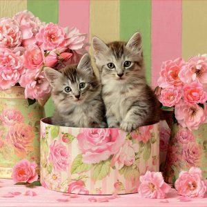 Kittens with Roses 500 Piece Jigsaw Puzzle - Educa