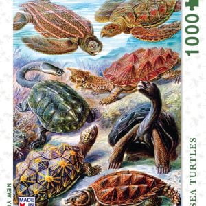 New York Puzzle Company - Turtles 1000 Piece Jigsaw Puzzle