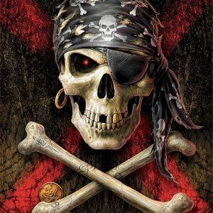 Pirate Skull 500 Piece Jigsaw Puzzle - Educa