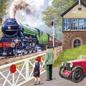 Back on Track 500 Piece Jigsaw Puzzle - Gibsons
