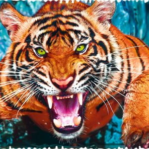 Crazy Shapes - Facing a Tiger 600 Piece Jigsaw Puzzle - Trefl