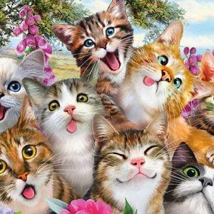 Cat Selfie 500 Piece Jigsaw Puzzle - Schmidt