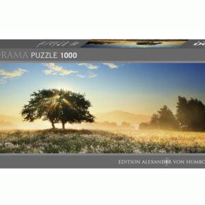 Alexander Von Humboldt Play of Light 1000 Piece Panoramic Puzzle - Heye