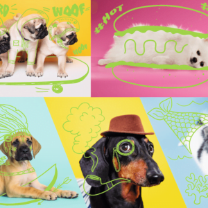 Neon Colour Line - Cool Dogs 1000 Piece Puzzle - Trefl