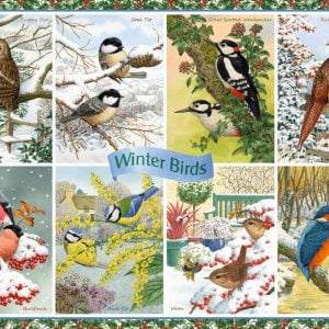 Winter Birds 1000 Piece Puzzle - Falcon de luxe