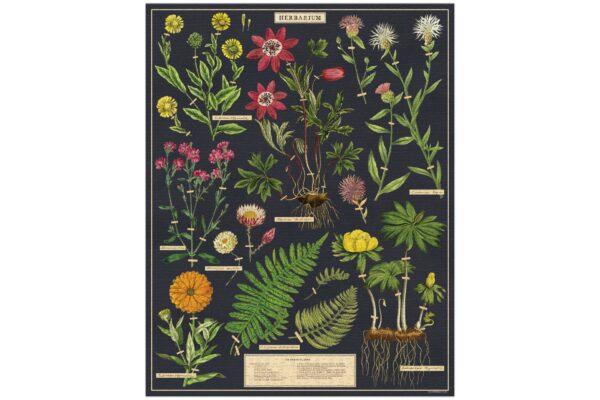 Vintage Puzzle - Herbarium 1000 Piece - Cavallini & Co
