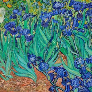 Van Gogh - Irises 1000 Piece Puzzle - Funbox