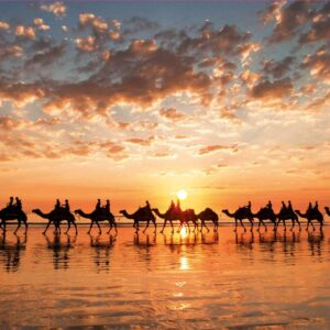 Golden Sunset on Cable Beach Australia 1000 Piece Puzzle - Educa