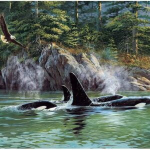 Orcas 1000 Piece Jigsaw Puzzle - Cobble Hill