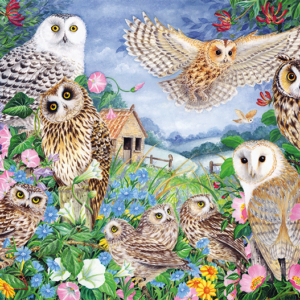Owls in the Wood 1000 Piece Jigsaw Puzzle - Falcon de luxe