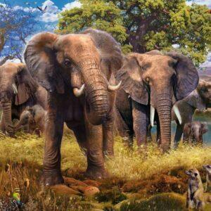 Elephant Family 500 Piece Jigsaw Puzzle - Ravensburger
