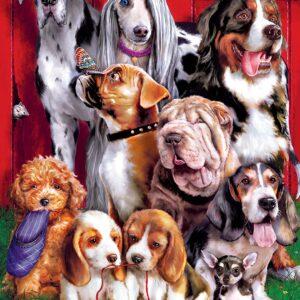 Furry Friends - Sitting Pretty 1000 Piece Puzzle - Masterpieces