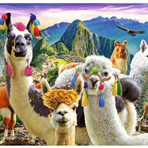 Llamas in the Mountains 500 Piece Puzzle - Trefl