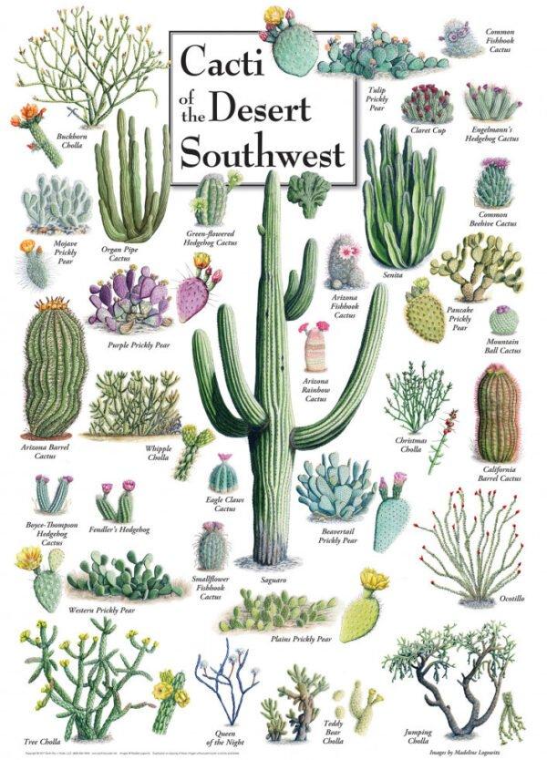 Poster Art - Cacti of the Desert Southwest 1000 Piece Puzzle - Masterpieces